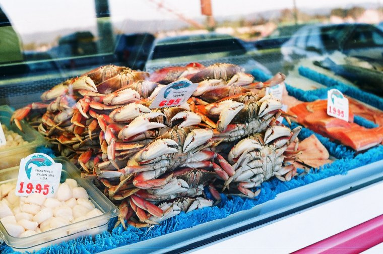 fresh fish and seafood at the market